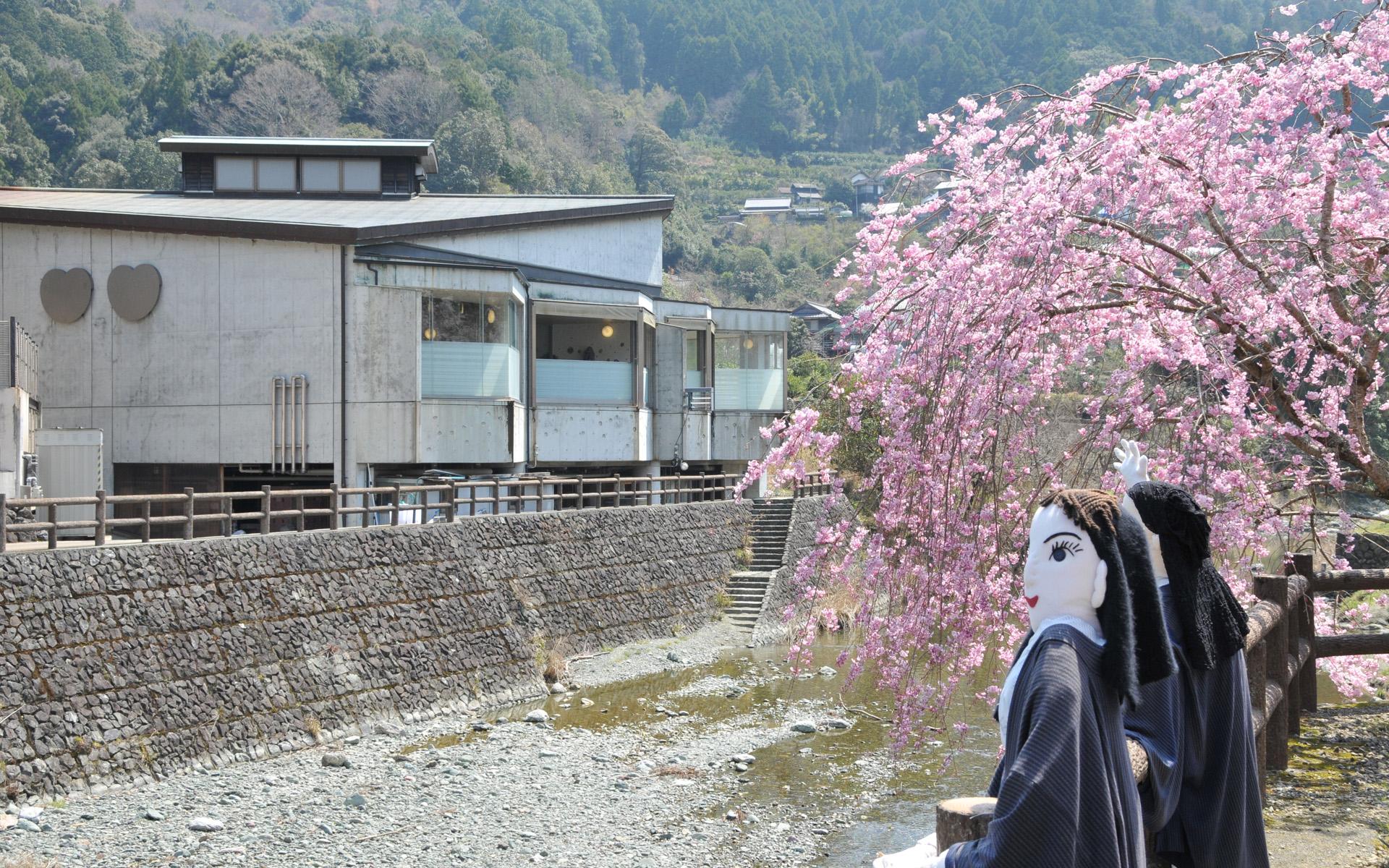 神山温泉桜とかかし 4月
